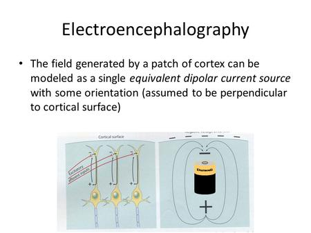 Electroencephalography The field generated by a patch of cortex can be modeled as a single equivalent dipolar current source with some orientation (assumed.