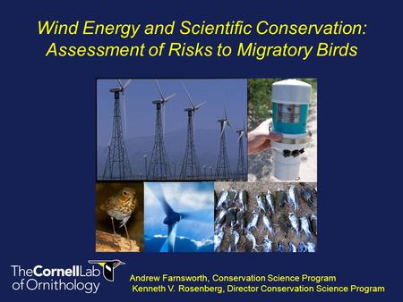 Wind Energy and Scientific Conservation: Assessment of Risks to Migratory Birds Andrew Farnsworth, Conservation Science Program Kenneth V. Rosenberg, Director.
