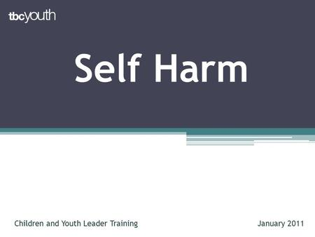 Self Harm Children and Youth Leader TrainingJanuary 2011.