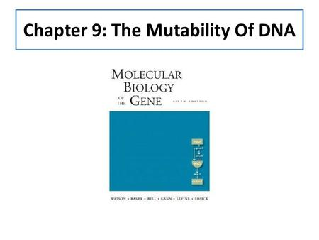 Chapter 9: The Mutability Of DNA. Introduction: The Fidelity Of The DNA DNA is our genetic material, as it is for every organism on earth Maintaining.