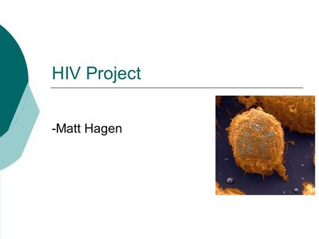 HIV Project -Matt Hagen. The Problem Are there any DNA sequences in common between HIV and human genomes? HIV-1, complete genome, chimeric clone AF033819.3HIV-1,