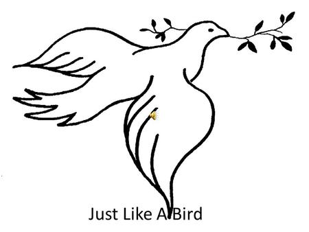 Just Like A Bird. Chorus -Just like the bird, when it found it's home, Just like the happy dove, Your house O Lord I love, Your house I love with honesty.