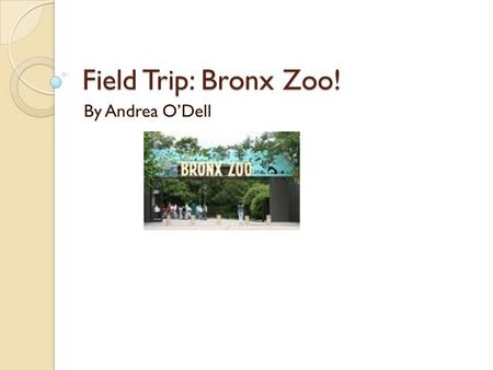 Field Trip: Bronx Zoo! By Andrea O'Dell. Wild Winterland! December 5, 2008 Reindeer, Storytelling, Ice Carving! Classic Children Fairytales Feed the Reindeer.