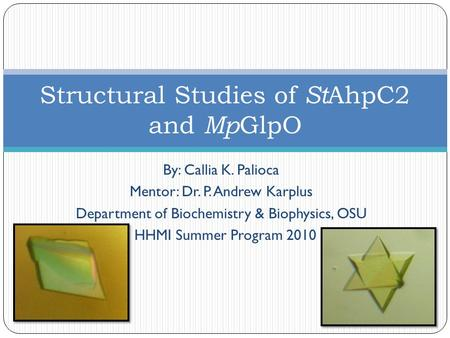 By: Callia K. Palioca Mentor: Dr. P. Andrew Karplus Department of Biochemistry & Biophysics, OSU HHMI Summer Program 2010 Structural Studies of St AhpC2.