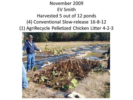 November 2009 EV Smith Harvested 5 out of 12 ponds (4) Conventional Slow-release 16-8-12 (1) AgriRecycle Pelletized Chicken Litter 4-2-3.