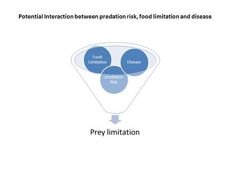 Potential Interaction between predation risk, food limitation and disease Prey limitation Food Limitation predation Risk Disease.