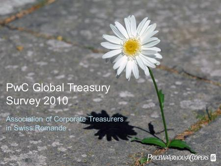 PwC Global Treasury Survey 2010 Association of Corporate Treasurers in Swiss Romande 