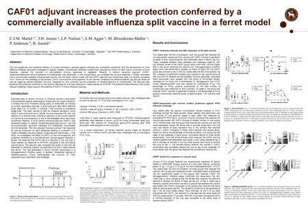 CAF01 adjuvant increases the protection conferred by a commercially available influenza split vaccine in a ferret model Introduction Desirable traits of.