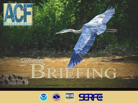 December Briefing. Outline Current Conditions Primary Factors – 2 nd Year La Nina – Drought Region / Feedback – Role of AO/NAO Streamflow Outlook – Historical.