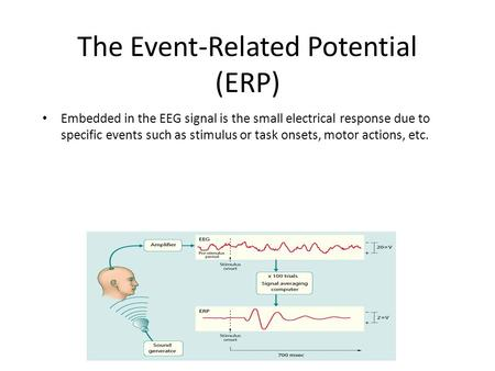 The Event-Related Potential (ERP) Embedded in the EEG signal is the small electrical response due to specific events such as stimulus or task onsets, motor.