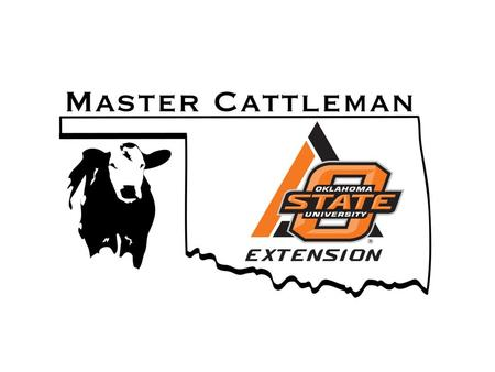 What is the OSU Master Cattleman program? A comprehensive educational curriculum for beef cattle producers.