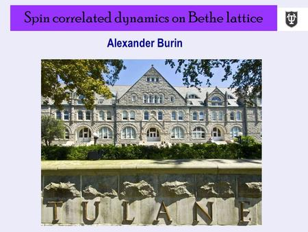 Spin correlated dynamics on Bethe lattice Alexander Burin.