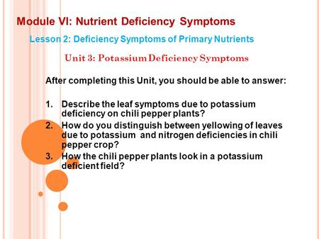 Module VI: Nutrient Deficiency Symptoms Lesson 2: Deficiency Symptoms of Primary Nutrients Unit 3: Potassium Deficiency Symptoms After completing this.