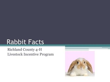 Rabbit Facts Richland County 4-H Livestock Incentive Program.