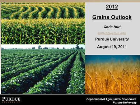 Department of Agricultural Economics Purdue University 2012 Grains Outlook Chris Hurt Purdue University August 19, 2011