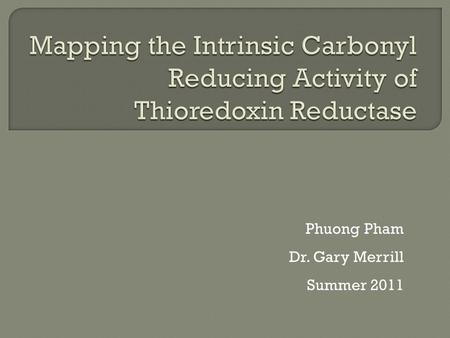 Phuong Pham Dr. Gary Merrill Summer 2011.  Explore the functions of thioredoxin reductase  Only known enzyme to reduce thioredoxin  Recent research.