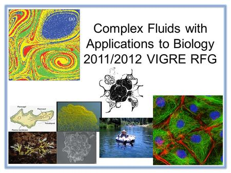 Complex Fluids with Applications to Biology 2011/2012 VIGRE RFG