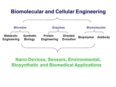 Biomolecular and Cellular Engineering Microbes Enzymes Biomolecules Metabolic Engineering Biopolymer Antibody Nano-Devices, Sensors, Environmental, Biosynthetic.