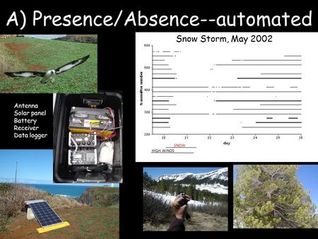 A) Presence/Absence--automated SNOW HIGH WINDS Snow Storm, May 2002 Antenna Solar panel Battery Receiver Data logger.