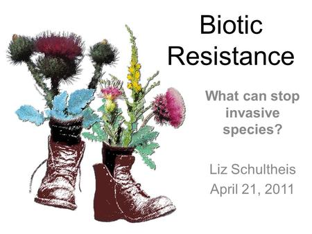Biotic Resistance What can stop invasive species? Liz Schultheis April 21, 2011.
