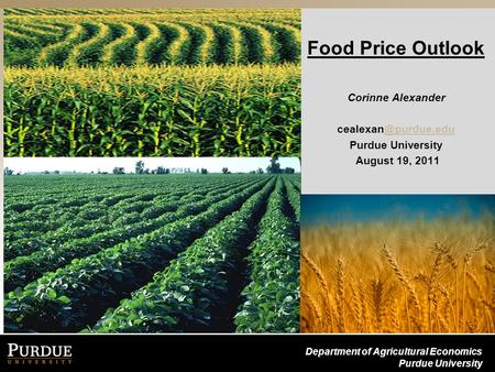 Department of Agricultural Economics Purdue University Food Price Outlook Corinne Alexander Purdue University August 19,