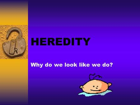 HEREDITY Why do we look like we do?. Learning Targets  Describe how evolution lead to the diversity of species on earth today.  Explain the function.