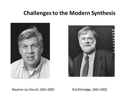 Challenges to the Modern Synthesis Stephen Jay Gould, 1941-2002Nils Eldredge, 1941-2002.
