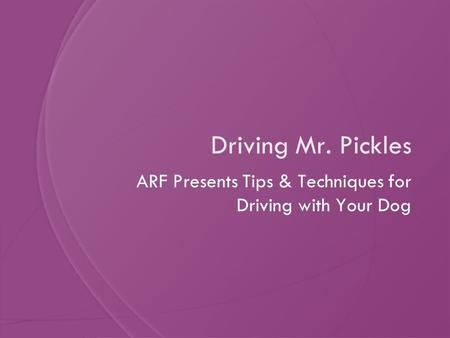 Driving Mr. Pickles ARF Presents Tips & Techniques for Driving with Your Dog.