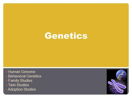 Genetics Human Genome Behavioral Genetics Family Studies Twin Studies