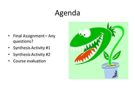 Agenda Final Assignment – Any questions? Synthesis Activity #1 Synthesis Activity #2 Course evaluation.