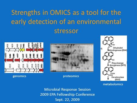 Strengths in OMICS as a tool for the early detection of an environmental stressor Microbial Response Session 2009 EPA Fellowship Conference Sept. 22, 2009.