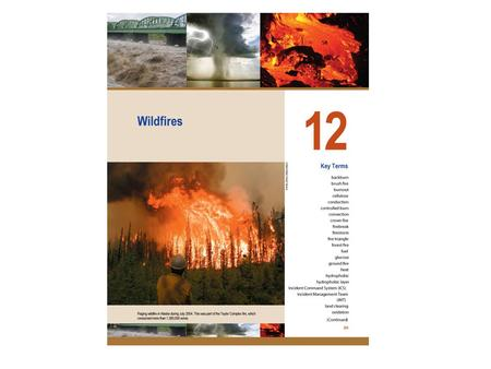 Phases of wildfires Preignition (energy absorbing)