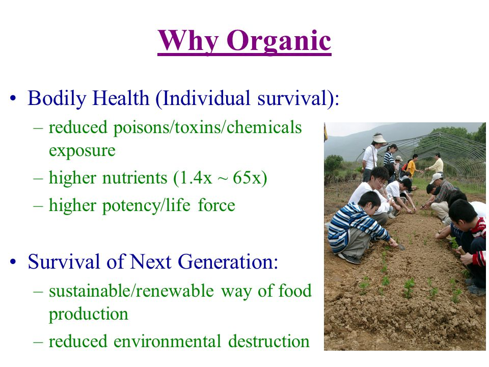Benefits of Organic Living Less illness (higher phytonutrients) Higher vitality (higher mineral content) Sharper mind (less toxin) Better taste (denser in nutrients/flavours) Less emotional (higher mineral content) Higher self-worth/self-respect (responsible for the Earth and next generation) Better relationship (compassionate)