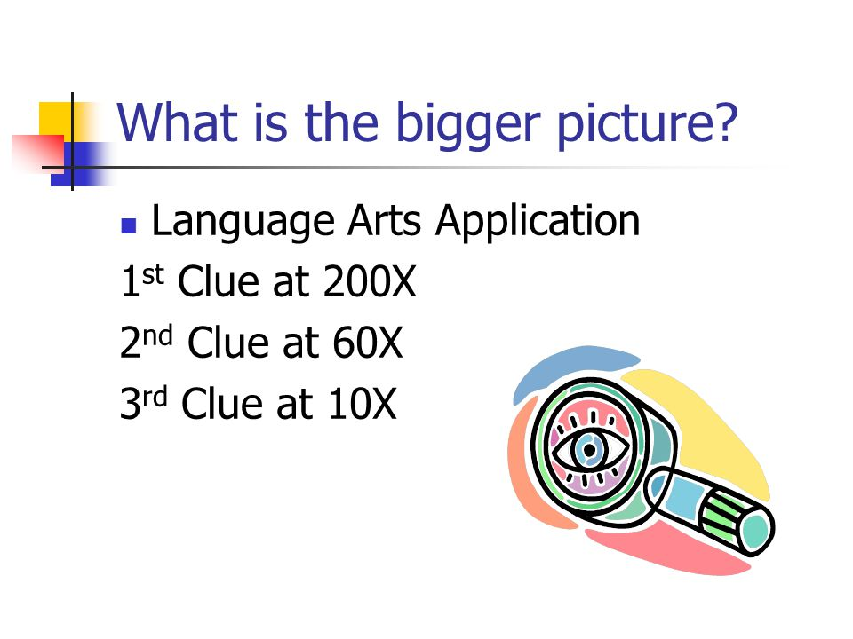 What is the Bigger Picture? 200X