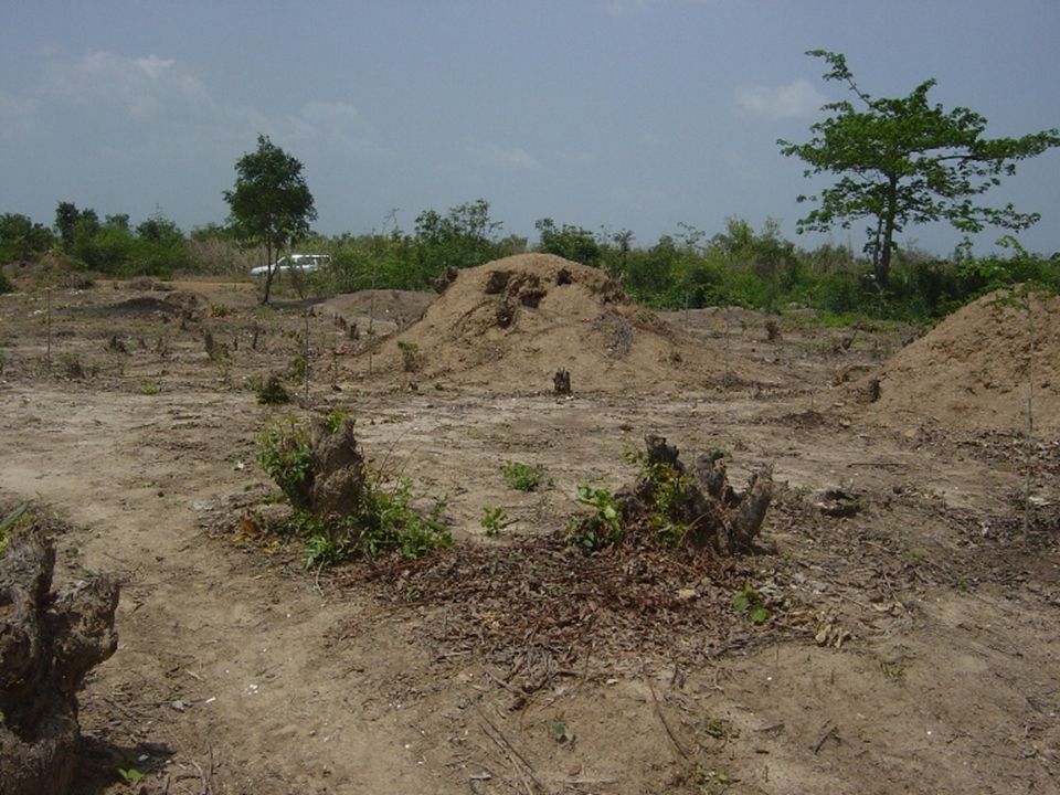 Activities Yet to be Done Organize a field visit for stakeholders to the established compost and cage aquaculture demonstration farms (Ongoing now).