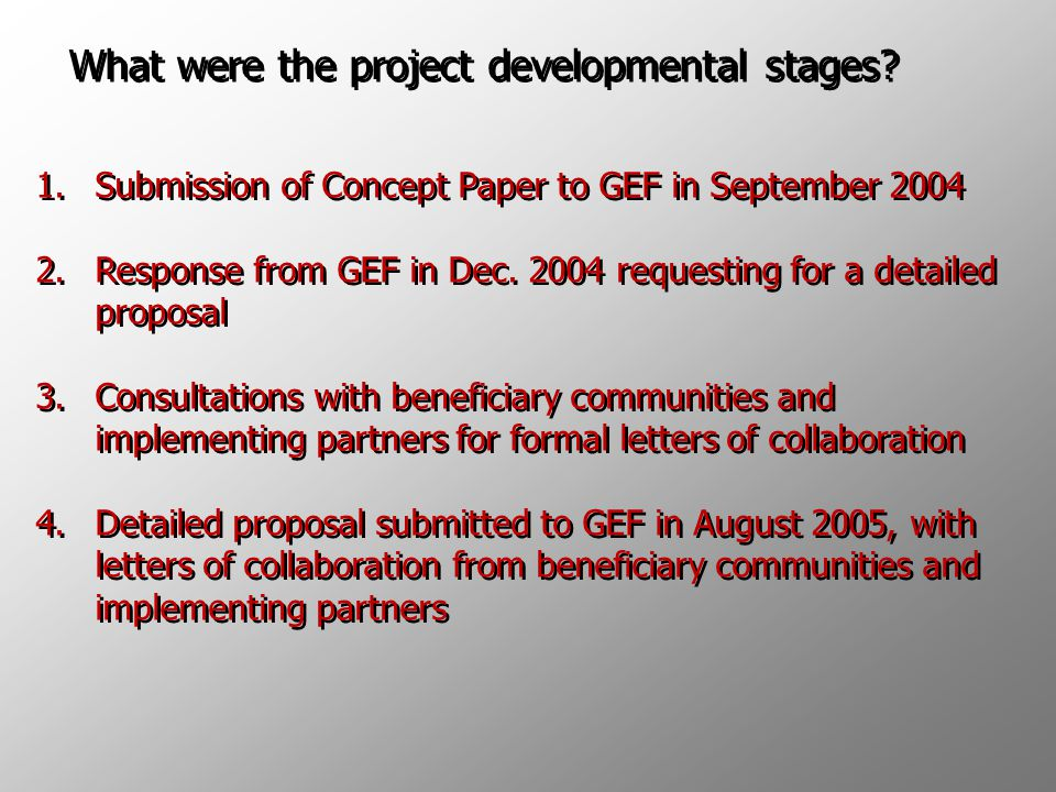 What were the project developmental stages.