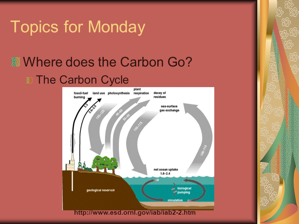 Readings for Monday 3.5 The Carbon Cycle