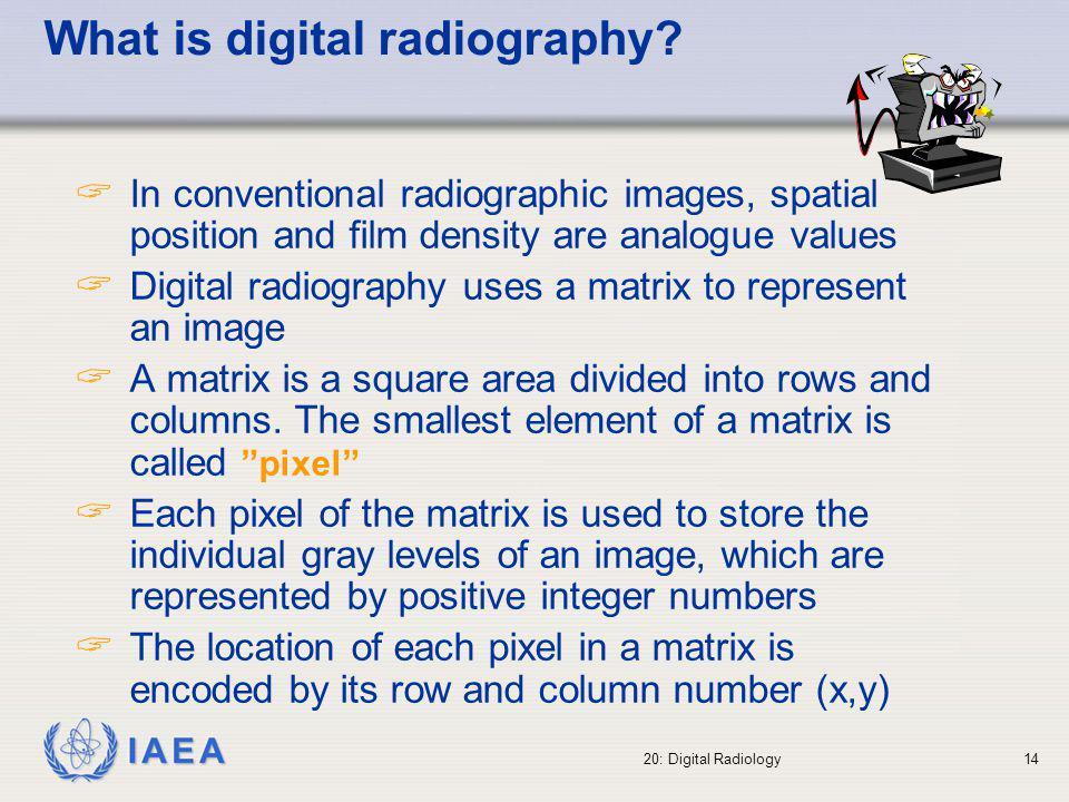 IAEA 20: Digital Radiology15 Different number of pixels per image: original was 3732 x 3062 pixels x 256 grey levels (21.8 Mbytes).