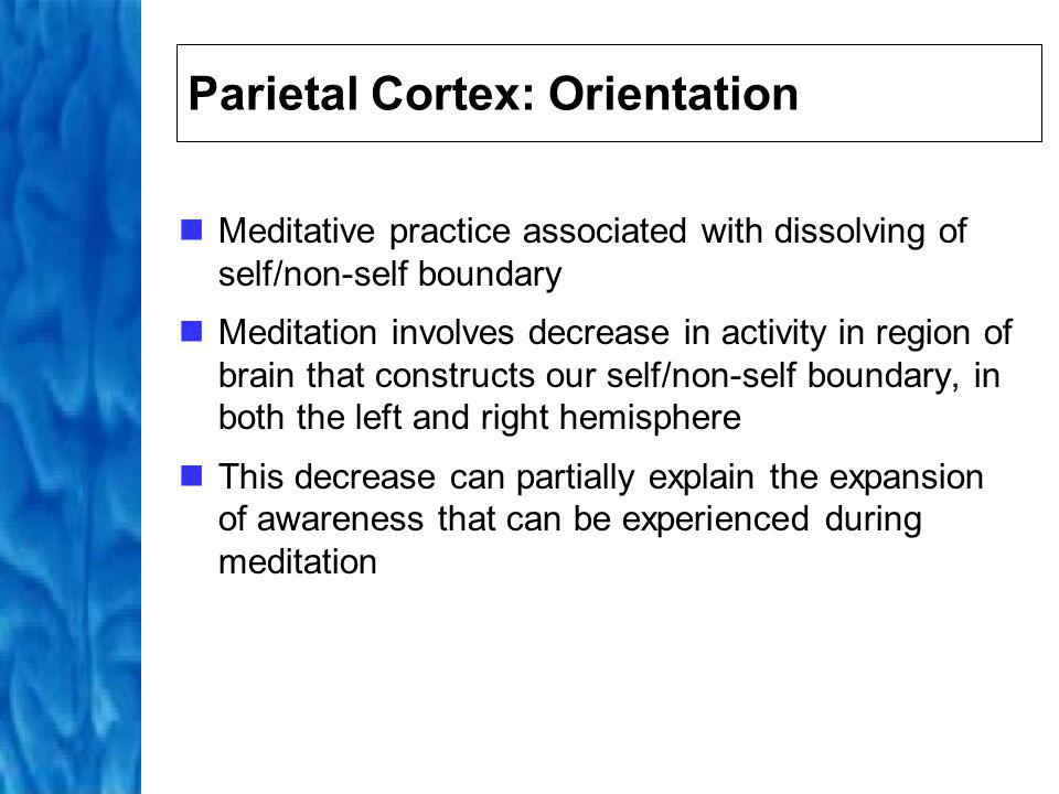 Shift From Left to Right Brain Effect on self/non-self boundary can also be understood in terms of initial shift in meditation from left to right brain activity Left brain: ego-centered thinking Right brain: holistic, non-ego thinking Attention is a right brain function; focused attention thus involves shift from left to right brained thinking