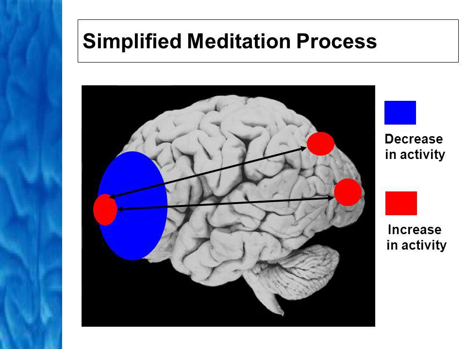 Active Meditation Activation of hippocampus and autonomic nervous system Peak response prompts hippocampus to dampen activity This results in decrease in activity in parietal lobes and thus sense of no or infinite space and/or time a loss of the ability to comprehend the experience in rational terms an inability to describe the experience using language