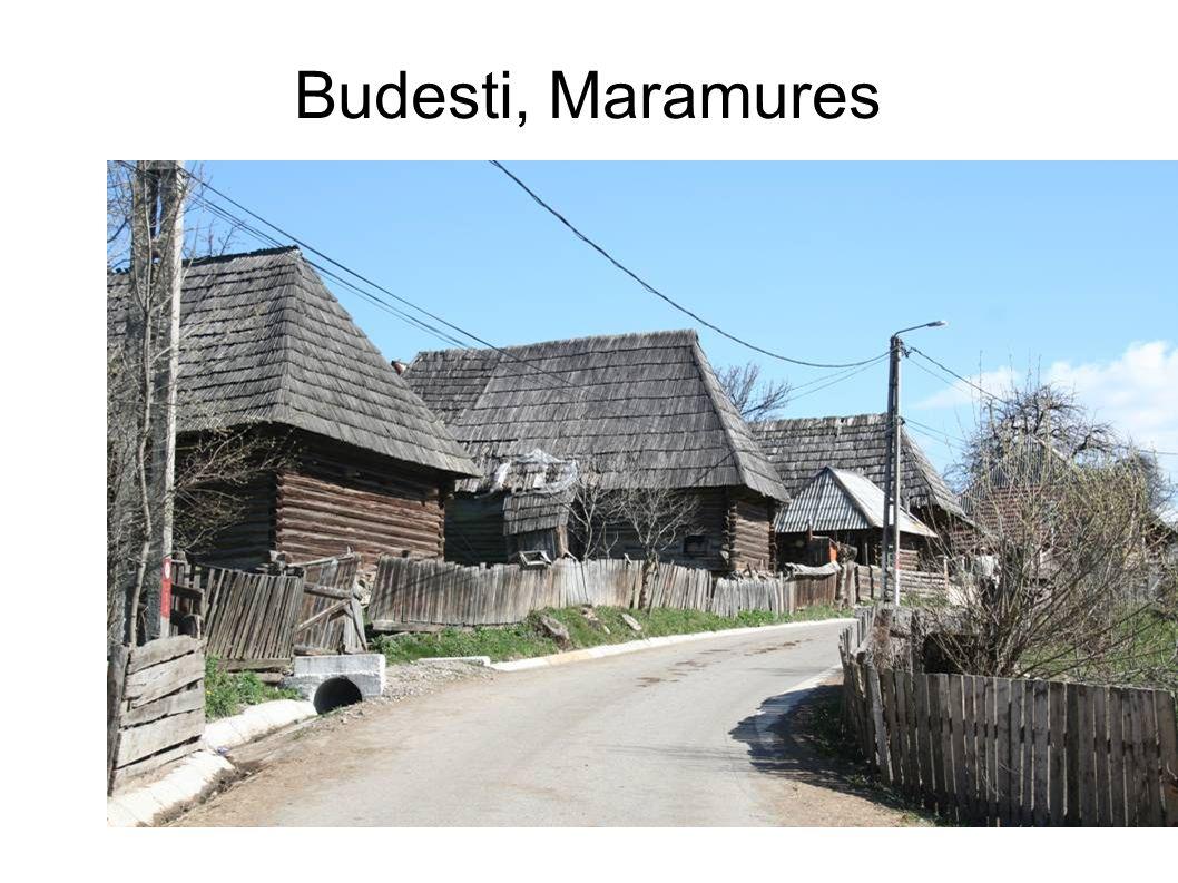 Budesti, Maramures, wedding ceremony, 2007