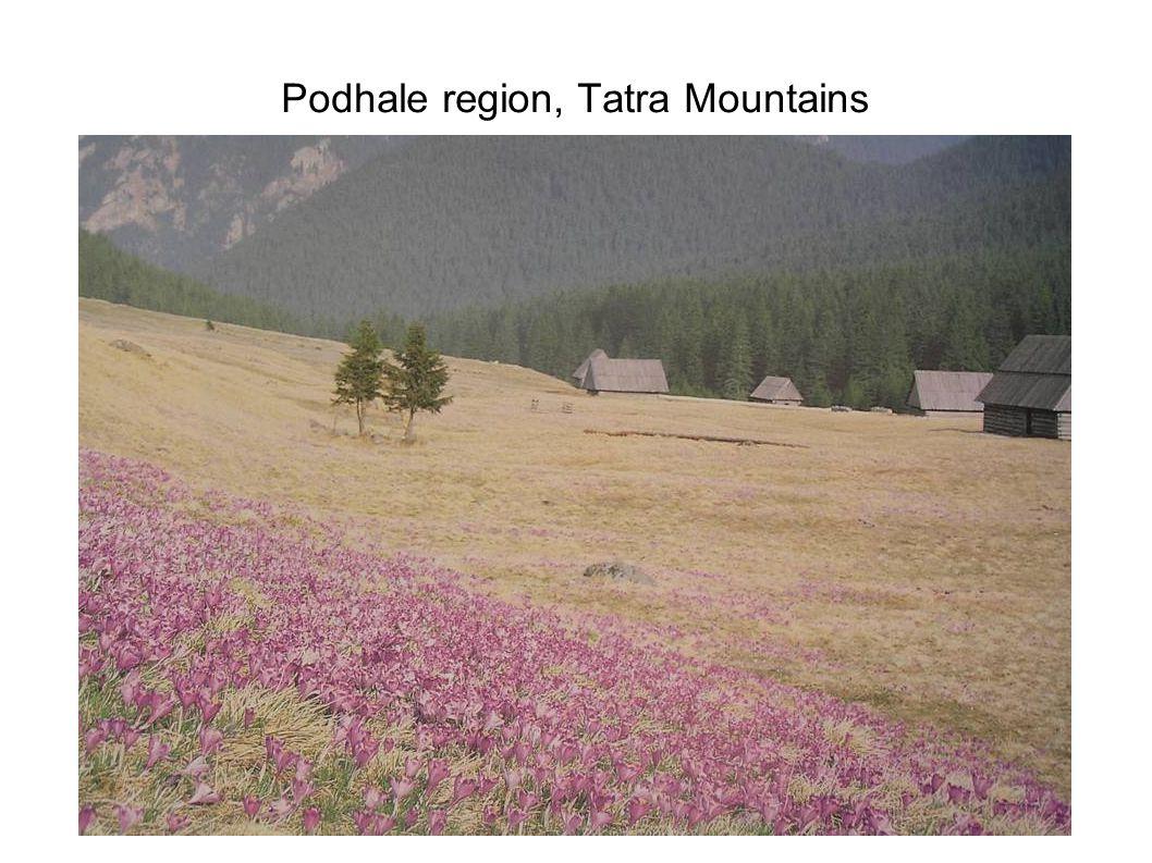 Shepherds in the Tatra Mountains