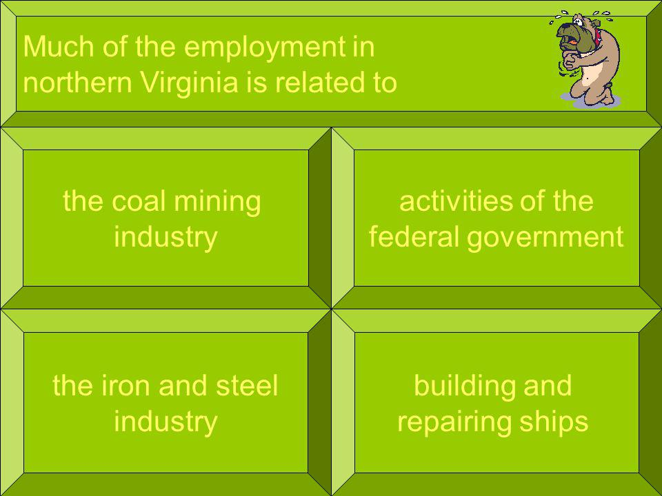 Much of the employment in northern Virginia is related to the coal mining industry building and repairing ships activities of the federal government the iron and steel industry