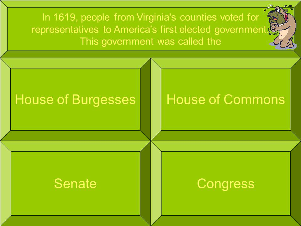 In 1619, people from Virginia s counties voted for representatives to Americas first elected government.