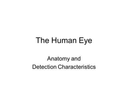 Anatomy and Detection Characteristics