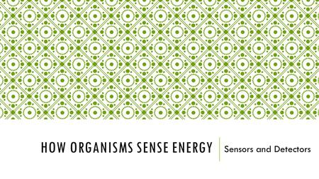 HOW ORGANISMS SENSE ENERGY Sensors and Detectors.