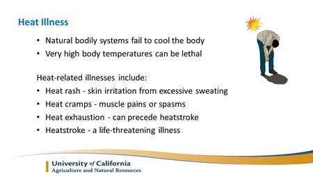 Heat Illness Natural bodily systems fail to cool the body Very high body temperatures can be lethal Heat-related illnesses include: Heat rash - skin irritation.