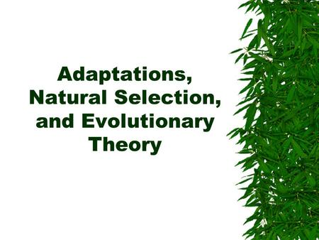 Adaptations, Natural Selection, and Evolutionary Theory