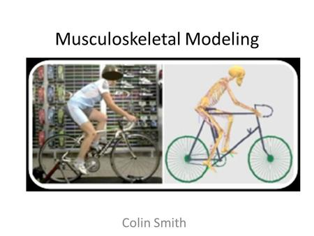 Musculoskeletal Modeling Colin Smith. A method for Studying Movement Things we can measure in movement: – Kinematics (using motion capture) – Output Forces.