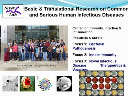 Center for Immunity, Infection & Inflammation Pediatrics & SSPPS Focus 1: Bacterial Pathogenesis Focus 2: Innate Immunity Focus 3: Novel Infectious Disease.